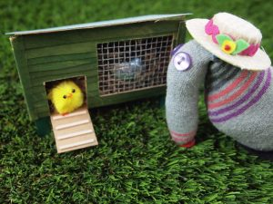 Dim finds an egg in the chicken coop