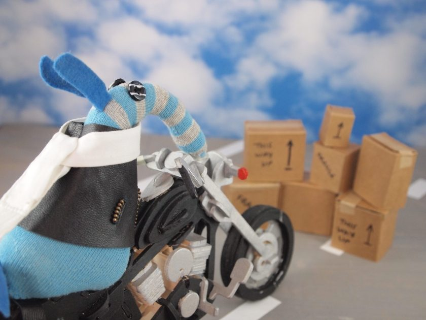 Arnold heads for a pile of cardboard boxes