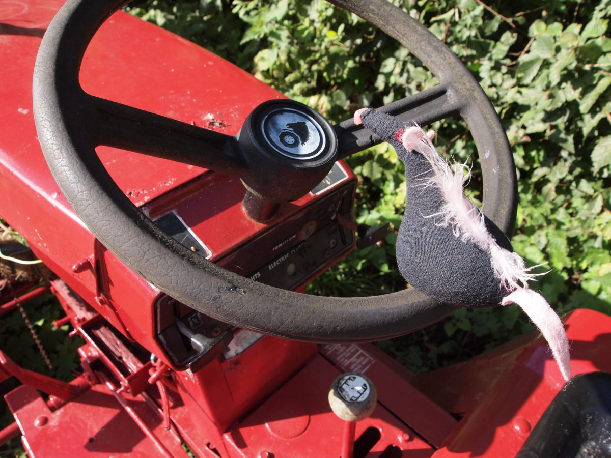 Fury sits on the steering wheel of the tractor
