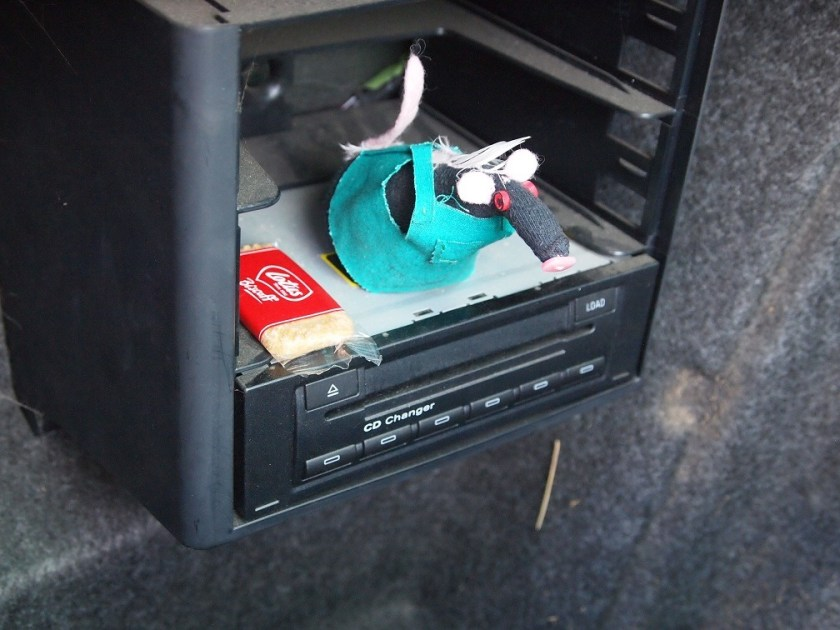 Fury sits on the CD changer