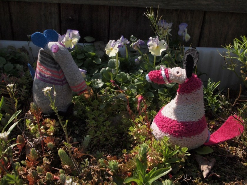 Dim and Matilda are out in a garden with flowers in it