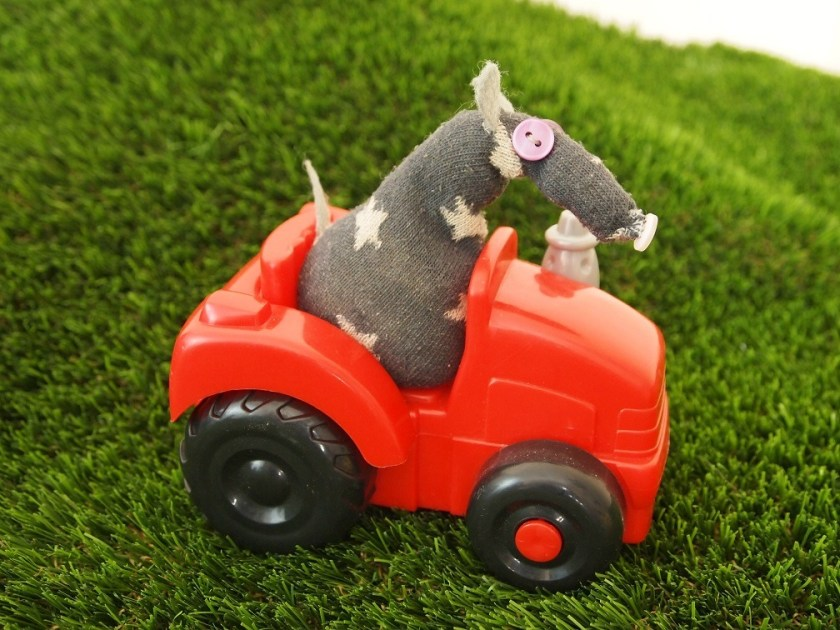 Vincent drives a little red tractor