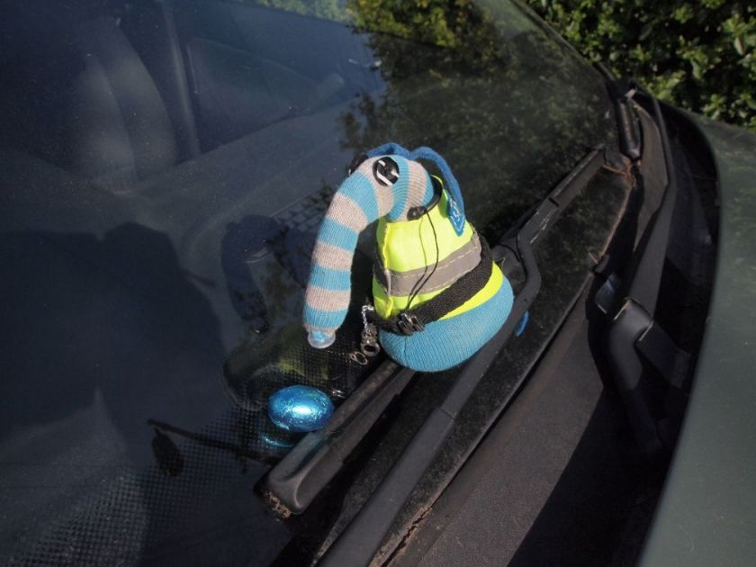 Arnold sits on the windscreen wiper of a car looking at an egg