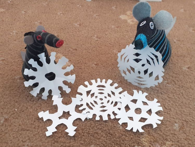 Hypno and Bernard show off a selection of snowflakes