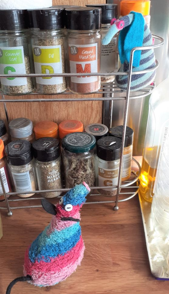 Ofelia sits in a spice rack