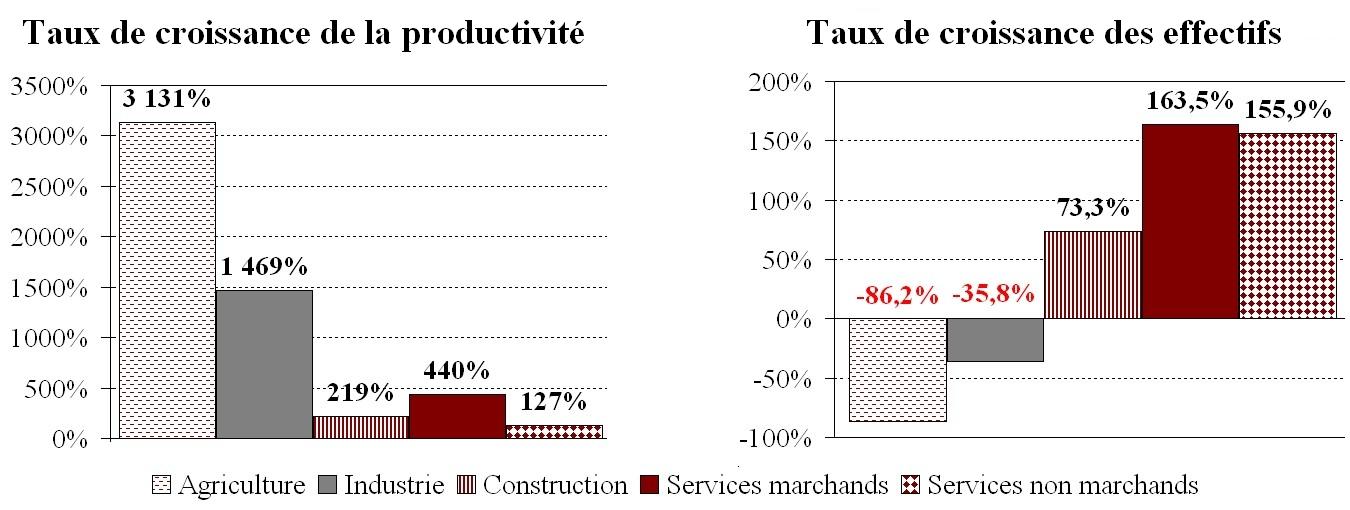 Causes Et Consequences Des Gains De Productivite