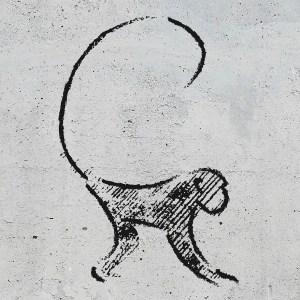 Ido Portal Logo