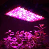 Do Your Indoor Plants Need Artificial Grow Lights? | Home ...