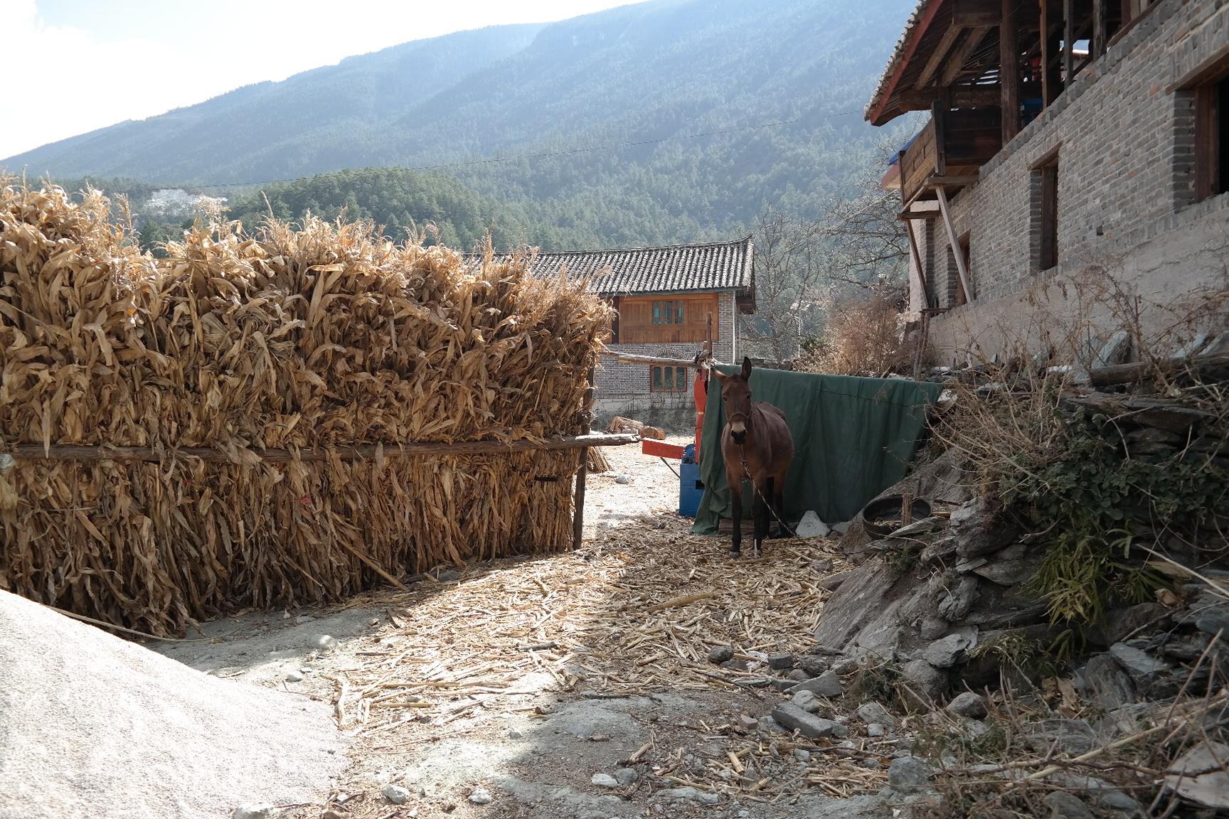 Xin Tuo Ecotourism Yunnan Village Mountain
