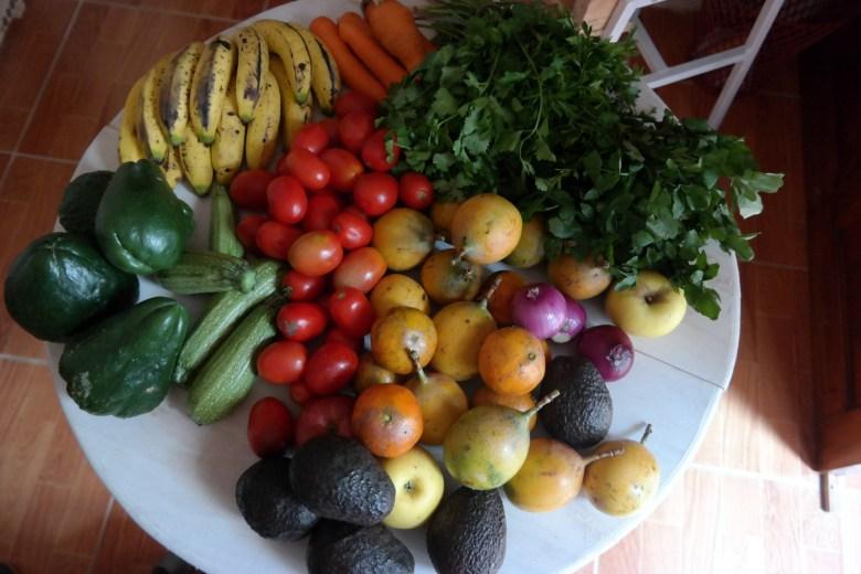 Move Our World Mexique San Cristobal de las casas le marché et la richesse des fruits mercado