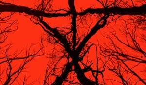blair-witch-movie-poster-1