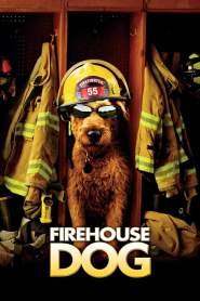 ยอดคุณตูบ ฮีโร่นักดับเพลิง Firehouse Dog (2007)