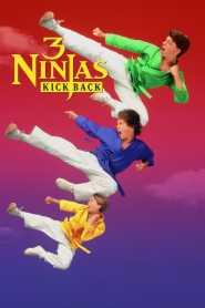 นินจิ๋ว นินจา นินแจ๋ว – ลูกเตะมหาภัย 3 Ninjas Kick Back (1994)