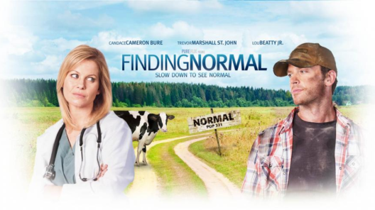 Finding Normal - DVD Image