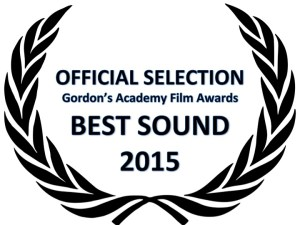 Nominees: American Sniper, The Grand Budapest Hotel, Whiplash, The Imitation Game, Birdman