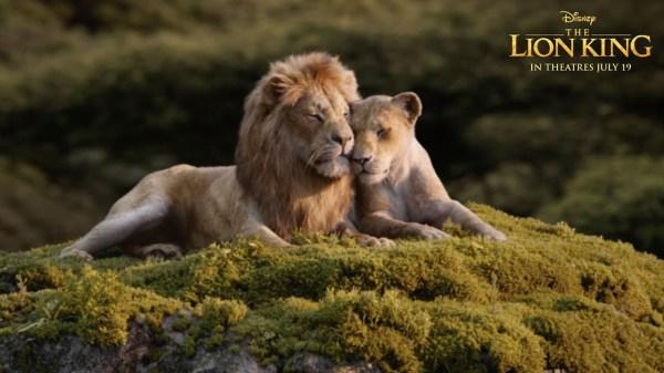 lion king # 63