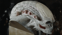 This 4000 Alien Newborn head spawned from the original mold