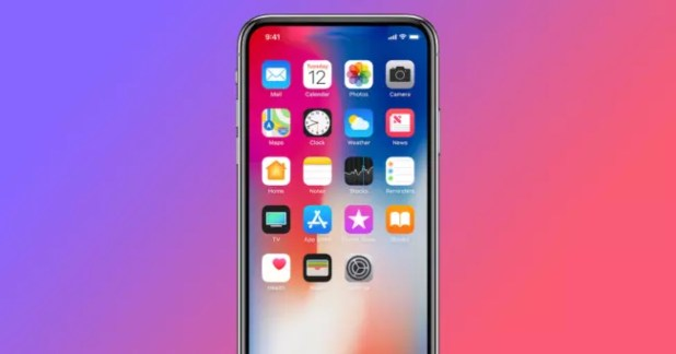 iphone x sin notch