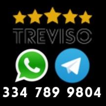 telegram whatsapp grillitreviso m5s treviso