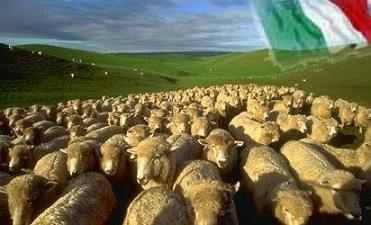 foto-pecore.jpg