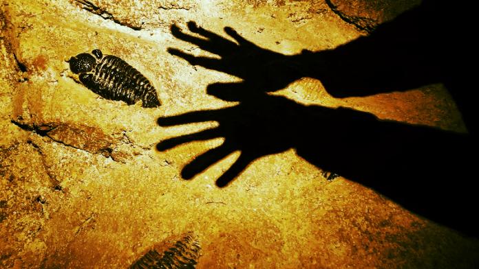 Er zijn drie soorten mensen: zij die overal voorafgegaan worden door hun schaduw, zij die altijd achtervolgd worden door hun schaduw en zij die nog nooit de zon hebben gezien. Gerd de Ley