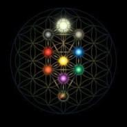 arbol de la vida geometria sagrada