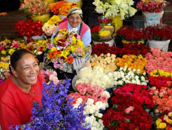Cape Town Adderley Street Flower Sellers