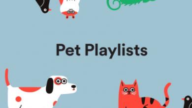 Photo of Vous pouvez maintenant créer des listes de lecture Spotify pour animaux de compagnie