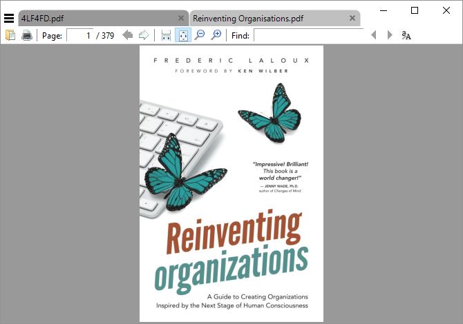 Ceci est une capture d'écran de Sumatra PDF Reader