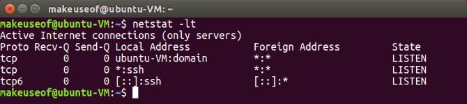 ubuntu netstat