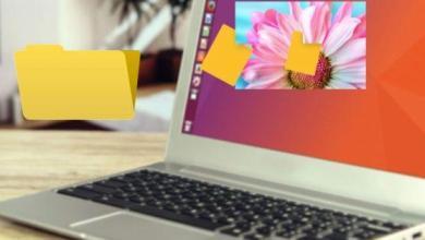 Photo of Comment masquer des fichiers dans des images sous Linux