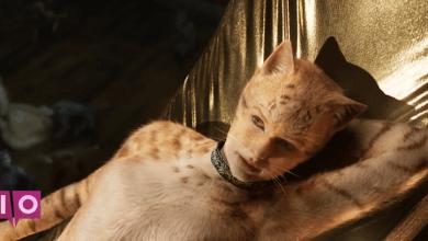 Photo of Les chats reçoivent des «effets visuels améliorés»