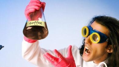 Photo of 8 excellents sites Web pour une meilleure tasse de café