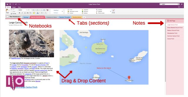 Capture d'écran de l'exemple d'organisation OneNote