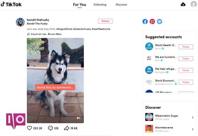 TikTok Browse Feed Desktop Site