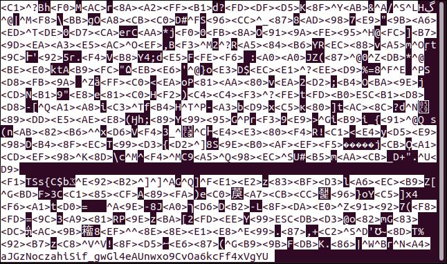 Contenu d'un fichier texte chiffré en moins dans une fenêtre de terminal.