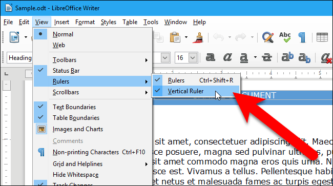 02_check_marks_on_both_ruler_options