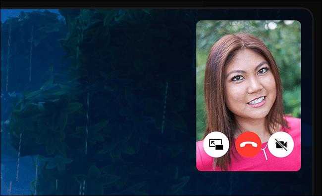 Contrôles FaceTime Picture in Picture sur iPad