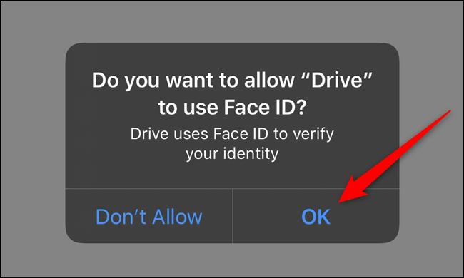 Ermöglichen Sie Google Drive den Zugriff auf Face ID oder Touch ID