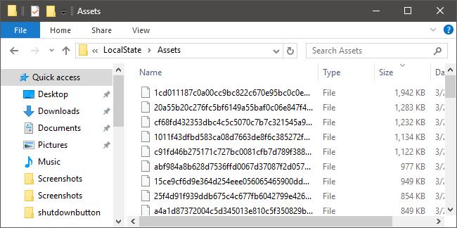 ws_files