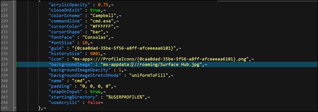Fichier de configuration json du terminal Windows, affichant une option d'arrière-plan personnalisée.