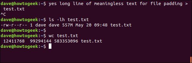 génération de fichiers de test avec yes ia terminal window
