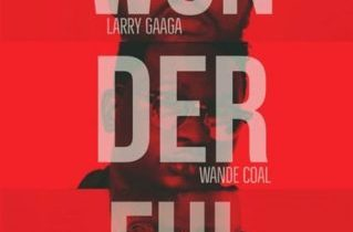 Larry Gaaga – Wonderful ft. Sarkodie x Wande Coal