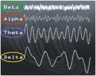 fen bilimleri yayınları Telkin mp3, Subliminal, Bilinçaltı