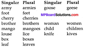 MP Board Class 8th Special English Chapter 8 English is Amazing 2