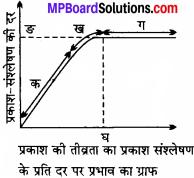 MP Board Class 11th Biology Solutions Chapter 13 उच्च पादपों में प्रकाश-संश्लेषण - 4