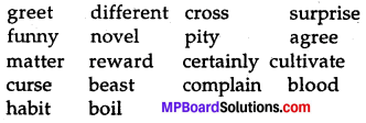 MP Board Class 7th Special English Chapter 13 Words, Words, Words 1