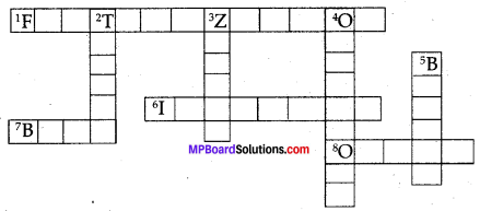 MP Board Class 8th Science Solutions Chapter 9 Reproduction in Animals 3