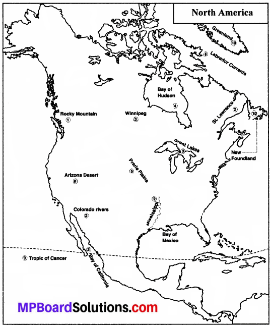 MP Board Class 8th Social Science Solutions Chapter 13 North America-Geographical Features img 1