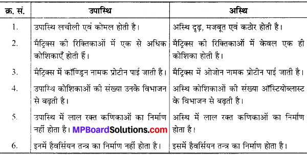 MP Board Class 9th Science Solutions Chapter 6 ऊतक image 38